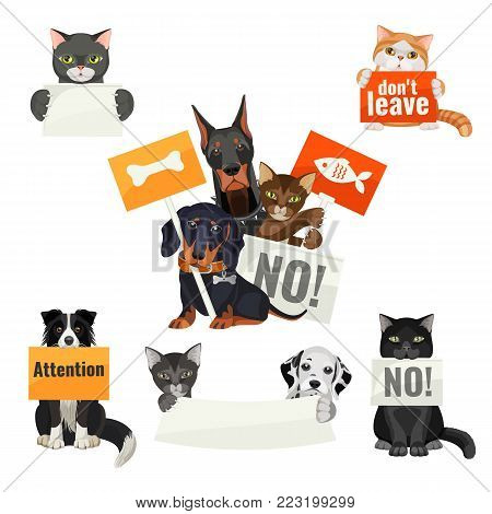 No bullying of animals, protesting cats and dogs with boards wanting to have meal and home, attention and care vector illustration with domestic pets
