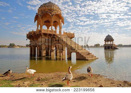 View of chhatris at Gadi Sagar lake with geese in the foreground, Jaisalmer, Rajasthan, India