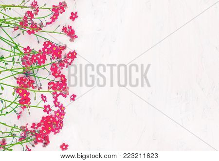 Beautiful Rustic Floral Background With Copy Space For Design Arrangement Of Small Red Wild Flowers