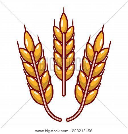 Grainy wheat icon. Cartoon illustration of grainy wheat vector icon for web.