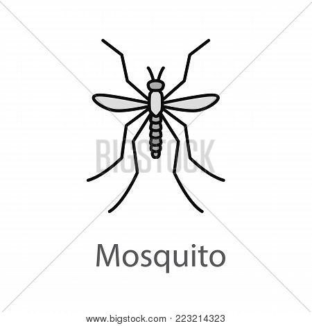 Mosquito color icon. Insect. Midge, gnat. Isolated vector illustration