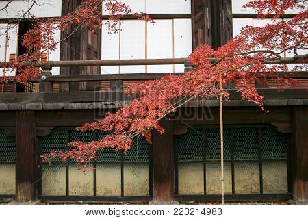 autumn in the Shinnyo do Temple in Kyoto