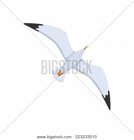 Bird gull, flying sea bird. A flight of seagulls in the sky, a flight over the water. Sea travel elements. Marine object. Vector illustration isolated.