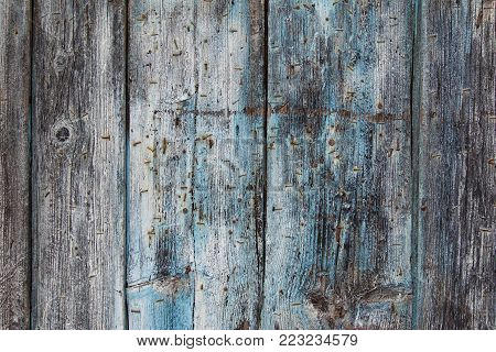 Old weathered wooden board with rusty nails - wooden grunge texture