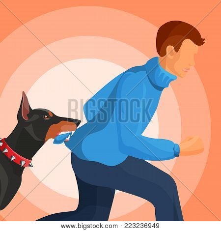 Angry doberman in red collar with sharp spikes holds man that tries run away in teeth by edge sweater cartoon flat vector illustration on red background.