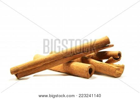 Long cinnamon on a white background with soft shadow. Dried wood bark on isolated