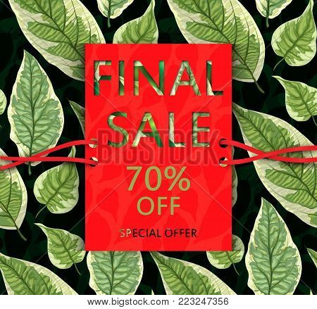 Vector  sale flyer with leaves. Botanical nature design. Leaf fall. Floral banner. Discount card. Sell-out, clearance, offer, closeout. Advertising template Colorful promo illustration