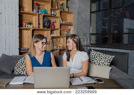 One on one meeting of a intelligent  workers talking about new business ideas, sitting with laptop computer in coffee shop interior. Smiling women friends having conversation after usage net-book