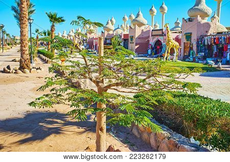 The young acacia tree in park of resort with beautiful pavilions of Alf leila wa leila (1001 nights) bazaar on the background, Sharm El Sheikh, Egypt. poster
