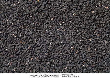 Nigella sativa (black cumin) background. Nigella seeds texture. Top view