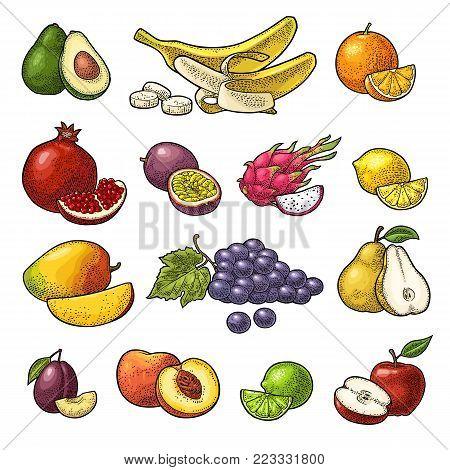Set fruits. Mango, lime, banana, maracuya, avocado, dragon, lemon, orange, garnet, peach apple pear grape plum passion Vector black vintage engraving illustration isolated on white