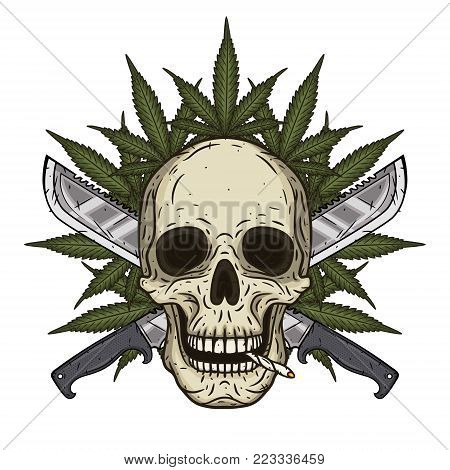 Human skull with two crossed machetes and marijuana leaf in hand drawn style. Rastaman skull with cannabis leafs