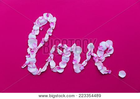 Pink rose petals spelling the word love
