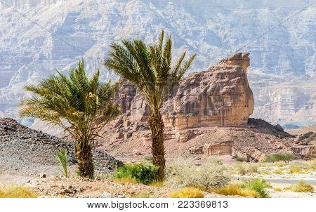 Geological nature park Timna is located 25 km north of Eilat (Israel) and combines beautiful scenery with unique geology, variety of sport and family activities