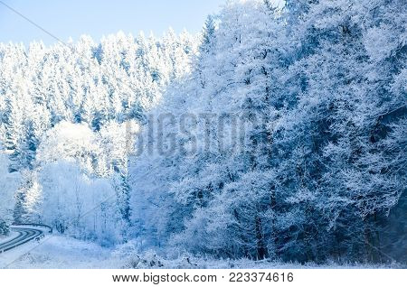Snow-covered road and forest in winter. Sunlight scene usable for traffic information with clearance for text