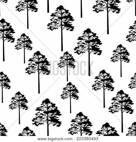 Seamless Pattern, Pine Tree, Black Silhouette Isolated on Tile White Background. Vector