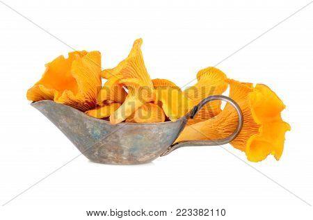 Yellow Chanterelles Mushrooms