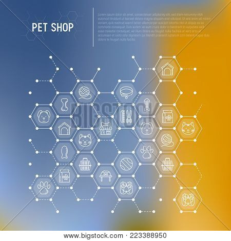 Pet shop concept in honeycombs with thin line icons: cat, dog, collar, kennel, grooming, food, toys. Modern vector illustration, web page template.