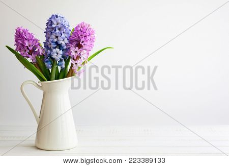 Flowers composition with lilac and pink hyacinths. Spring flowers in vase on white background.