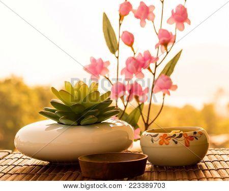 Beauty Spa Wellness Meaning Luxurious Relaxing Salon