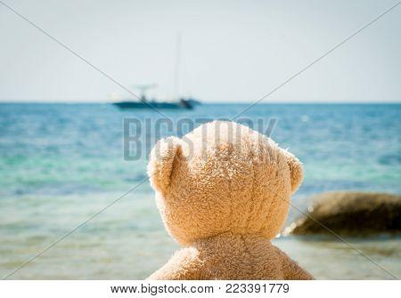 Teddy Bear Walking On The Sandy Beach In Thailand