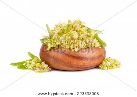 Linden flowers in bamboo plate isilated on white background