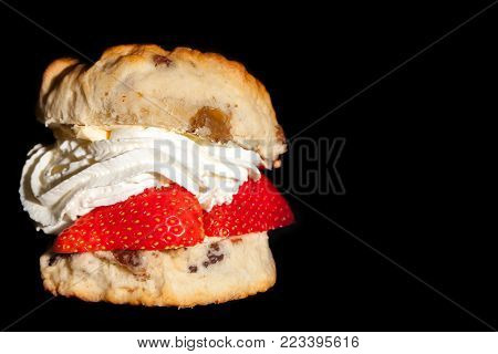 Strawberry cream scone close-up isolated against black background. Classic sultana scone filled with  strawberries and fresh whipped cream. English afternoon sweet dessert snack. With copy space.
