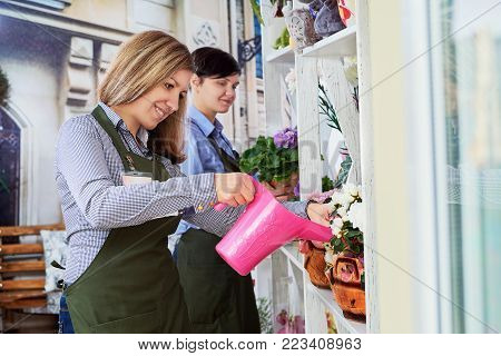 Women working in flower shop.Beautiful woman watering flowers at work. smiling girl holding a pink watering can watering a plant.