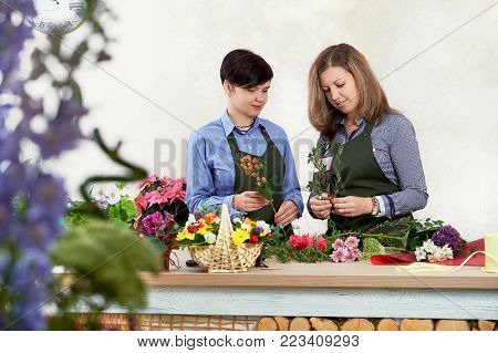 Small flower business. Women working in flower shop. young female florist working in flower shop. people, gardening and profession concept. two sellers in a flower shop.