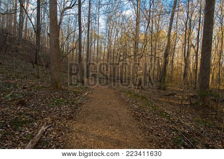 Running trails during earliy spring season