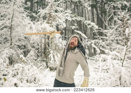Temperature, Freezing, Cold Snap, Snowfall.