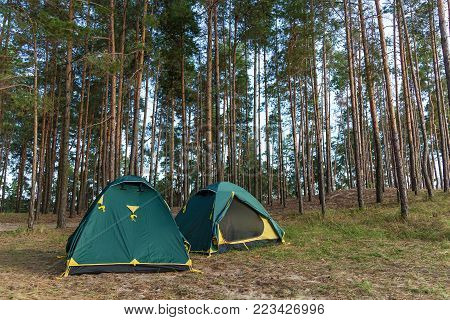 Four tents in a coniferous forest. Tents in a coniferous forest.