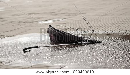 A black broken umbrella in a swamp