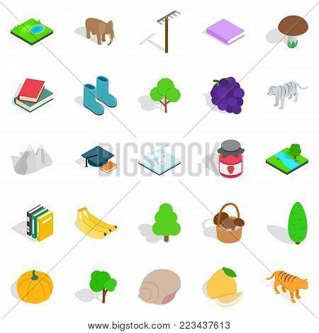 Remote place icons set. Isometric set of 25 remote place vector icons for web isolated on white background