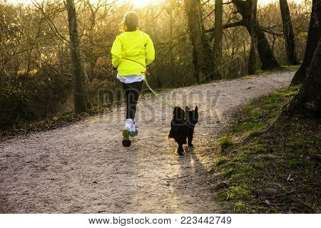 The woman does a jogging together with her dog on a leash. They ran along the path between the trees to meet the sun.