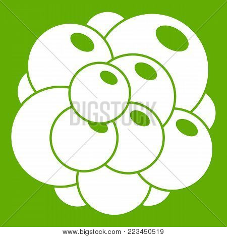 Ovary icon white isolated on green background. Vector illustration