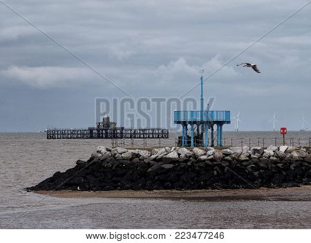the ruins of the old pier in herne bay with harbour wall and grey sky with flying gull