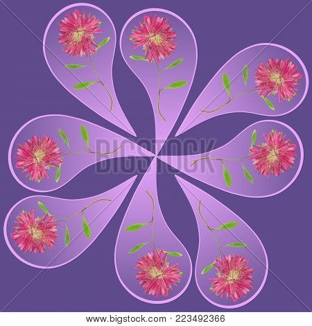 Natural mandala from dried pressed flowers, petals and leaves. Mandala is symbol of meditation, Buddhism, Hinduism, yoga. Geometric mandala drawing made by plants on ultra-violet background in oriental style.