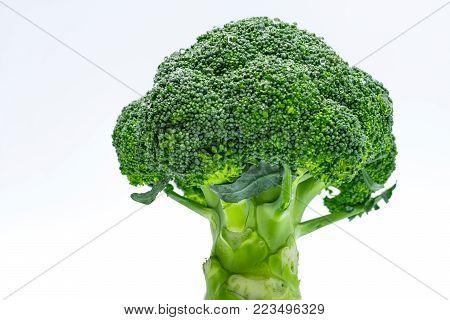 Macro shot detail of Green broccoli (Brassica oleracea). Vegetables natural source of betacarotene, vitamin c, vitamin k, fiber food, folate. Fresh broccoli cabbage isolated on white background.