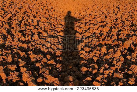 human shadow on soil lump in rice field before plant rice