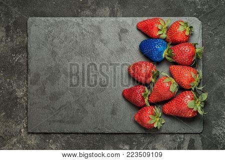 Concept of individuality, exclusivity, better choice. One blue strawberry among red strawberries on black stone tray background. Top view with copy space.
