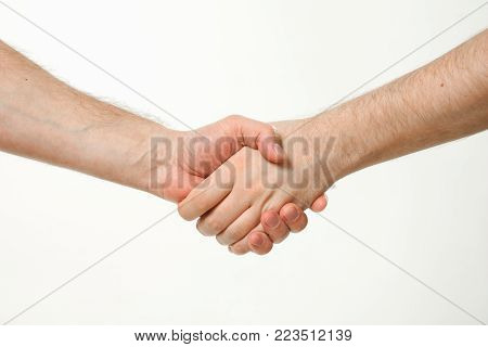 Handshake Of Two Men. Hands Without Clothes.