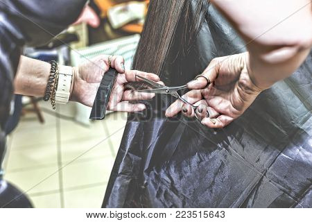 The stylist shears a woman long hair in a beauty salon. close up