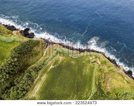 Fields cliff and sea near the small village of Ginetes on Sao Miguel Island in the Azores, Portugal.