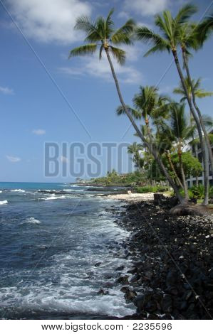 Kona Coastline Hawaii
