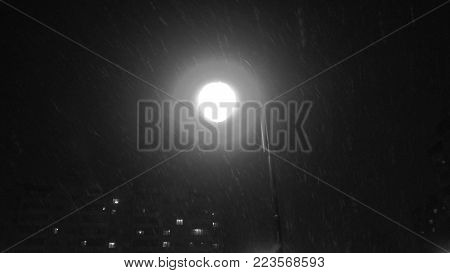 Night Winter Street Lamp With Falling Snow.