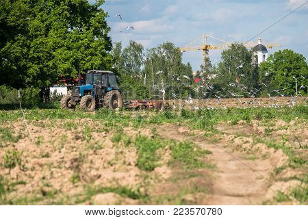 A tractor plows the field on a bright Sunny day. Rural spring landscape.