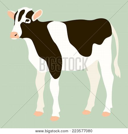 cow vector illustration flat style  profile view farm
