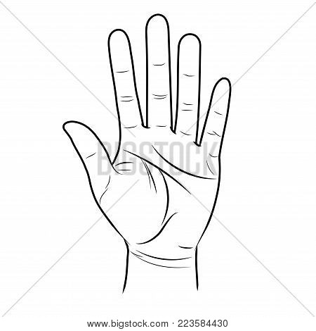 The open hand is lifted up. Divination by lines on the palm. Vector