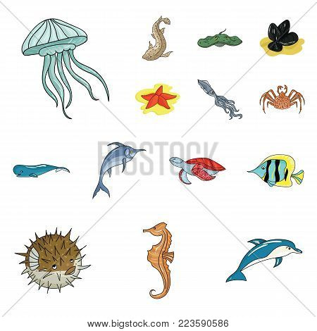 A variety of marine animals cartoon icons in set collection for design. Fish and shellfish vector symbol stock  illustration.
